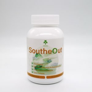 SoutheOut 1